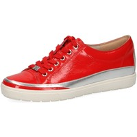 Chaussures Femme Baskets basses Caprice 23654-555 Red