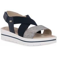 Chaussures Femme Sandales et Nu-pieds Valleverde BLU SANDALO Blu