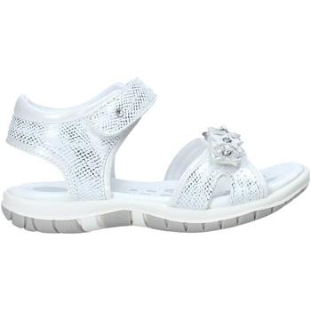 Chaussures Enfant Sandales et Nu-pieds Chicco 01065377000000 Blanc