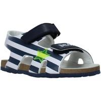 Chaussures Enfant Sandales et Nu-pieds Chicco 01065374000000 Bleu