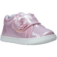 Chaussures Enfant Baskets basses Chicco 01065679000000 Rose