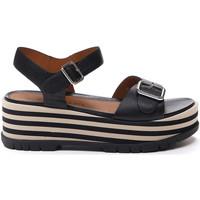 Chaussures Femme Sandales et Nu-pieds Stonefly 213920 Noir