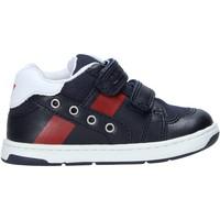 Chaussures Enfant Baskets mode Chicco 01065653000000 Bleu
