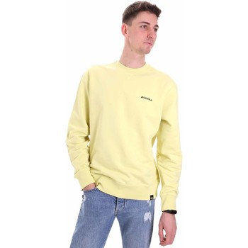 Vêtements Homme Sweats Dickies DK0A4XCRB541 Jaune
