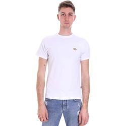 Vêtements Homme T-shirts manches courtes Dickies DK0A4XDAWHX1 Blanc
