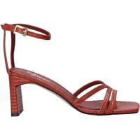 Chaussures Femme Sandales et Nu-pieds Grace Shoes 395002 Marron