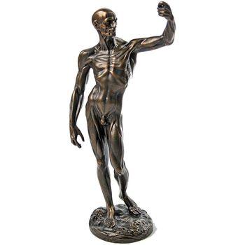 Maison & Déco Statuettes et figurines Muzeum Figurine Etude Anatomique par Jean-Antoine Houdon Marron