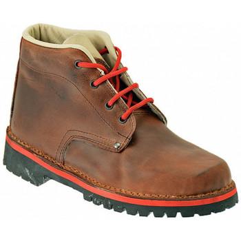 Chaussures Homme Randonnée Koloski PEDULA 4 Casual montantes Multicolore