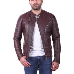 Vêtements Homme Vestes en cuir / synthétiques Ladc Jason Aubergine Aubergine