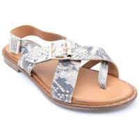 Chaussures Femme Sandales et Nu-pieds Coco & Abricot medeyrolles Multicolore