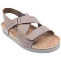 Chaussures Homme Sandales et Nu-pieds Mephisto nadek Marron