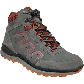 Chaussures Homme Boots Allrounder by Mephisto Ranus-tex Gris