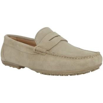 Chaussures Homme Mocassins Pierre Cardin SERRAJE Beige
