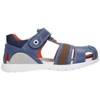 Chaussures Garçon Sandales et Nu-pieds Biomecanics 212188 Niño Gris gris