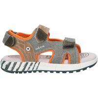 Chaussures Garçon Sandales et Nu-pieds Geox J02AVB 0NB22 J ALBEN Verde