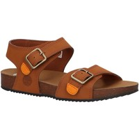 Chaussures Enfant Sandales et Nu-pieds Timberland A4339 CASTLE ISLAND Marr?n
