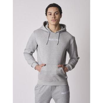 Vêtements Homme Sweats Project X Paris Hoodie Gris clair