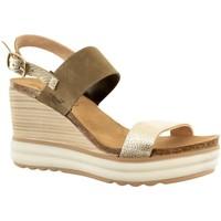 Chaussures Femme Sandales et Nu-pieds Plakton plaka oro kaki jaune