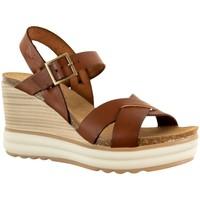 Chaussures Femme Sandales et Nu-pieds Plakton plantio camello marron