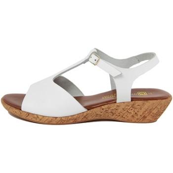 Chaussures Femme Sandales et Nu-pieds Gagliani Renzo  Bianco
