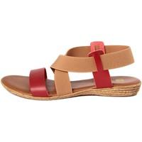 Chaussures Femme Sandales et Nu-pieds Gagliani Renzo  Multicolore