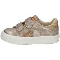 Chaussures Fille Baskets basses Alviero Martini 0865/0662 PLATINE
