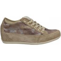 Chaussures Femme Baskets basses IgI&CO DSE 71571 taupe-marrone