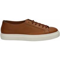 Chaussures Homme Derbies Franco Fedele CERVO marrone