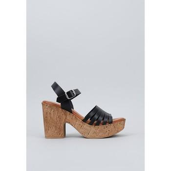 Chaussures Femme Sandales et Nu-pieds Musse & Cloud  Noir