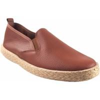 Chaussures Homme Baskets basses Neles Chaussure homme  6903 cuir Marron