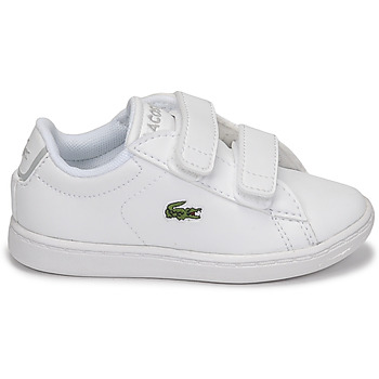 Lacoste CARNABY EVO BL 21 1 SUI