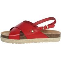 Chaussures Femme Sandales et Nu-pieds Yokono JAVA-153 Rouge