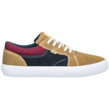 Chaussures Homme Chaussures de Skate Element WASSO canyon khaki Marron