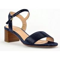 Chaussures Femme Sandales et Nu-pieds We Do CO44710 MARINE PYTHON