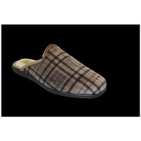 Chaussures Homme Chaussons Anatonic Isaac Marron
