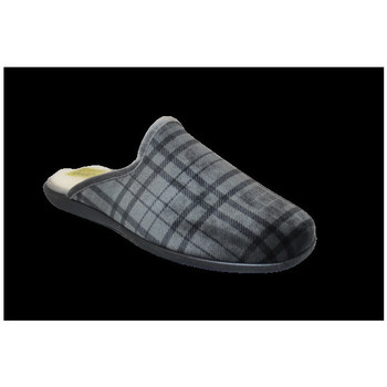 Chaussures Homme Chaussons Anatonic Isaac Gris