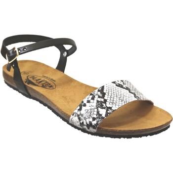 Chaussures Femme Sandales et Nu-pieds Plakton Mam-ambo-575725 Noir blanc