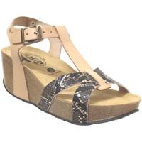 Chaussures Femme Sandales et Nu-pieds Plakton So cross Beige cuir
