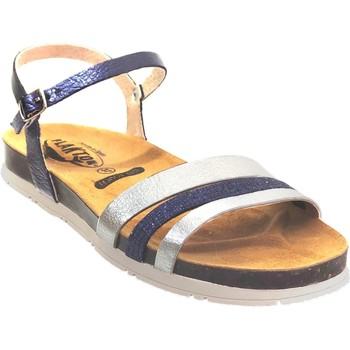 Chaussures Femme Sandales et Nu-pieds Plakton Green Marine/Gris