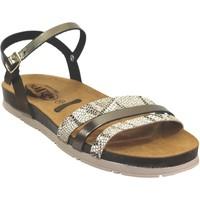 Chaussures Femme Sandales et Nu-pieds Plakton Green Kaki cuir