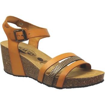 Chaussures Femme Sandales et Nu-pieds Plakton Brescia Orange cuir