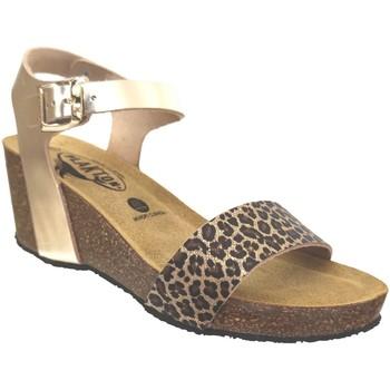 Chaussures Femme Sandales et Nu-pieds Plakton Brissa Platine métallisé