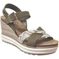 Chaussures Femme Sandales et Nu-pieds Plakton Plantio Kaki nubuck