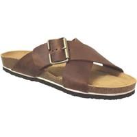 Chaussures Homme Mules Plakton Bate Marron cuir