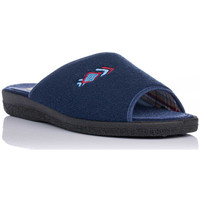 Chaussures Femme Chaussons Roal 876 Azul
