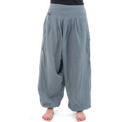 Vêtements Femme Pantalons fluides / Sarouels Fantazia Pantalon sarouel noat coton nepalais aladin sarwel Gris-Bleu