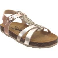 Chaussures Fille Sandales et Nu-pieds Plakton Cross Platine