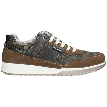 Chaussures Homme Baskets basses Valleverde 53861PE21 faible Homme TAUPE TAUPE