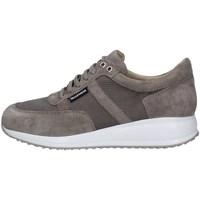 Chaussures Homme Baskets basses Valleverde V66821 GRIS