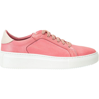 Chaussures Femme Baskets basses Inuovo Sneaker Rose